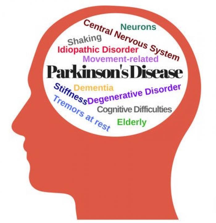 Θεραπεία της Νόσου του Πάρκινσον